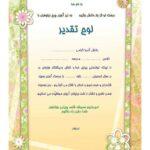 تقدیرنامه ساده B5 کد 303